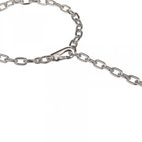 """Hook Time"" Chrome Plated Medium Sized Link Chain Collar with Snap Hook - 3.0 mm"