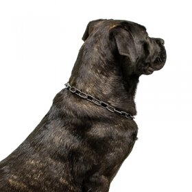 """True Protector"" Black Stainless Steel Medium Sized Link Chain Collar - 3.0 mm"