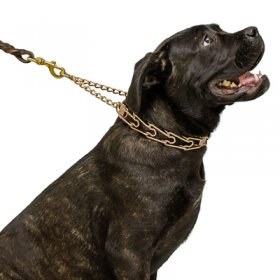 """Easy Doggy"" Curogan Pinch Collar with Center-Plate and Assembly Chain (3.2 mm x 23 inches)"