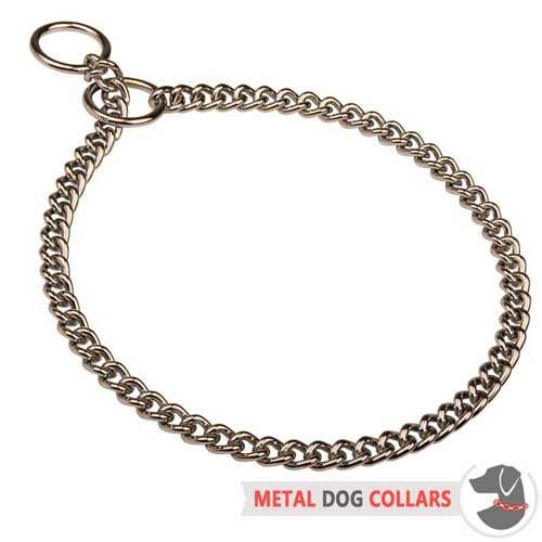 Reliable choke dog collar with chrome plating