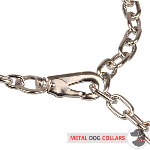 Easy in use choke chain dog collar with snap hook