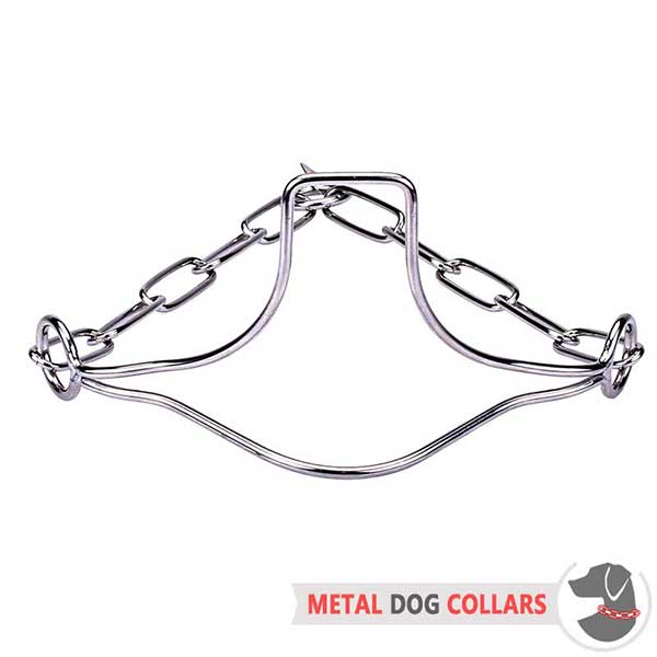 Firm Dog Collar of Stainless Material