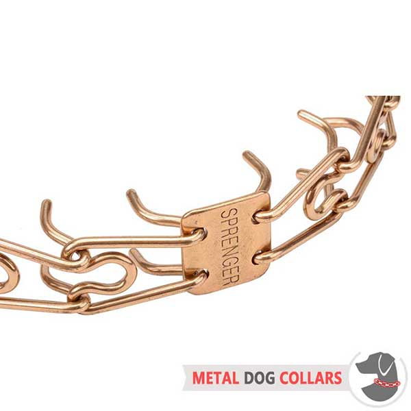 Rust-proof Dog Prong Collar for Behavior Correction