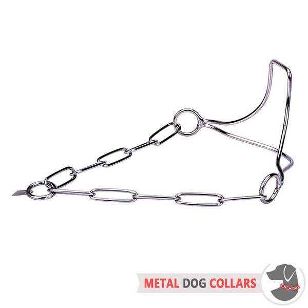 Steel Dog Collar for Show