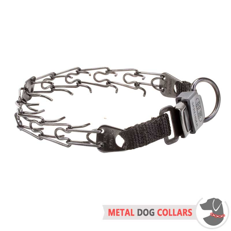 best pinch collar for dogs images