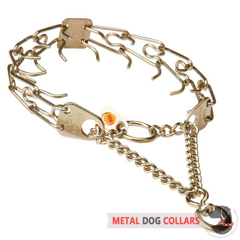 stainless steel martingale pinch dog collar
