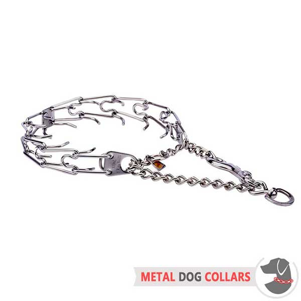 Safe Dog Prong Collar with Unique Fittings