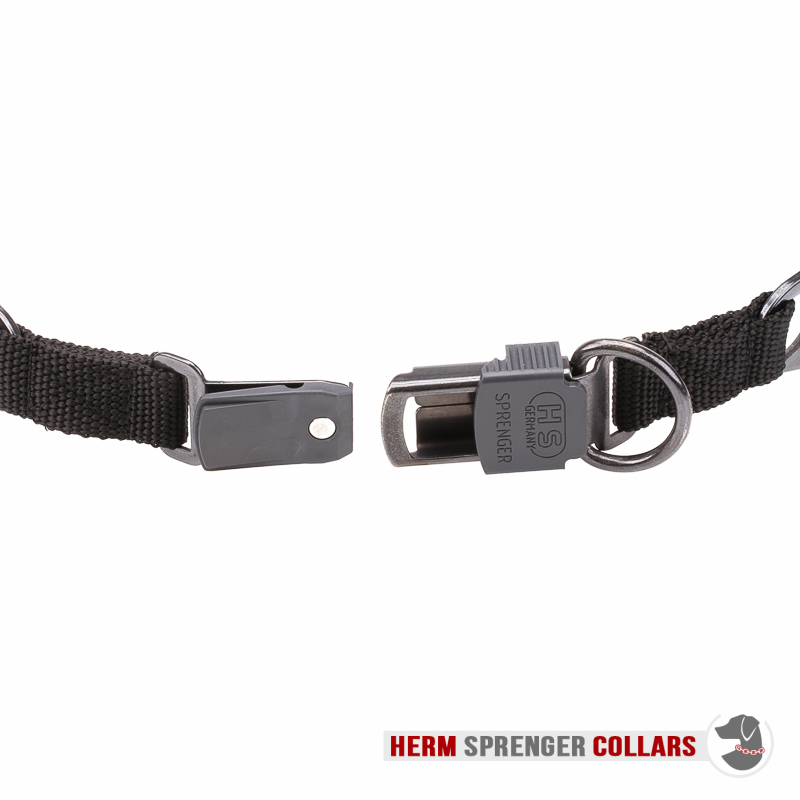 """Daily Trainer"" Black Stainless Steel Pinch Collar with Center-Plate and Click-Lock Buckle (3.2 mm x 20 ½ inches)"