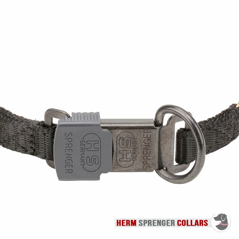 """Comfy Wear"" Curogan Pinch Collar with Center-Plate and Click Lock Buckle (2.25 mm x 16 inches)"