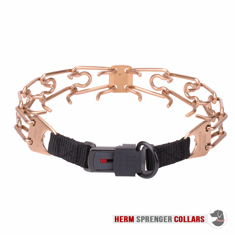 Curogan Pinch Collar with Center-Plate and Click Lock Buckle (4 mm x 23 3/5 inches)